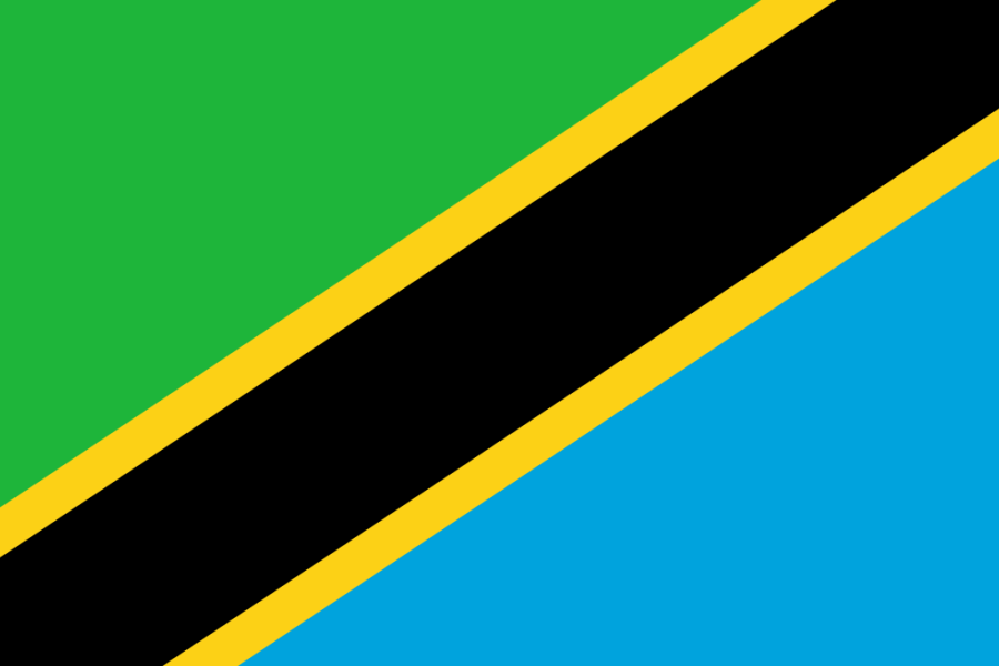 Flag ofTanzania a Africa Cup of Nations 2019 finalist