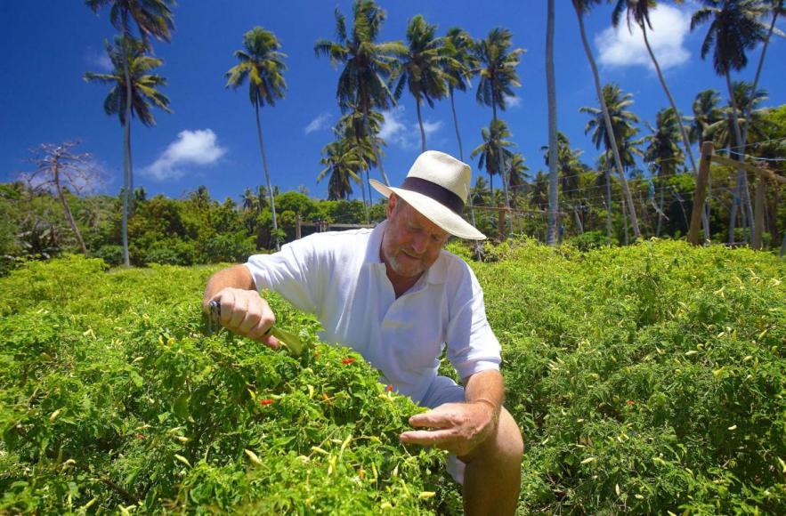 fregate-island-plantation4