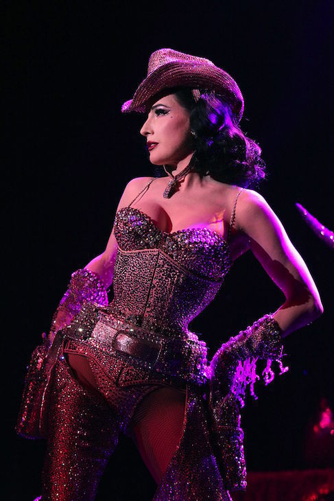 Dita Von Teeese in The Art of the Teese. by Jennifer Mitchell