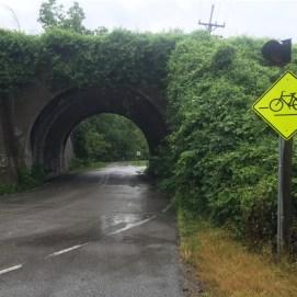 Bikes this way.