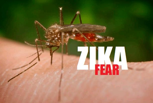 1-zika-virus