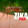 Eugenics WMD: Zika Virus Prompts Disturbing New Call For 'No Child Policy'