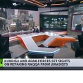 Henningsen on RT: 'US has a covert agenda in Raqqa, Syria'