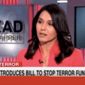 CNN's Hostile Treatment of Congresswoman Tulsi Gabbard after revealing US are arming, funding Terrorists in Syria