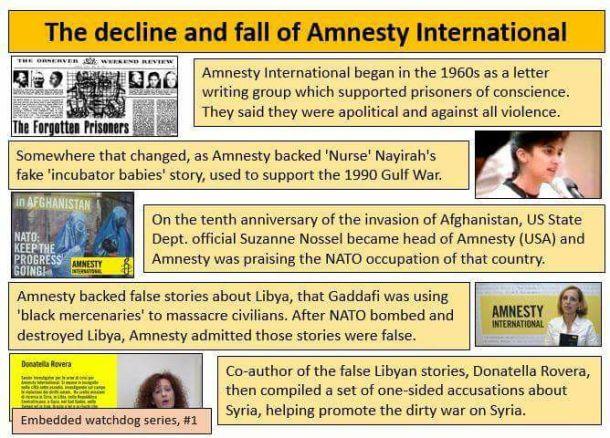 tim-amnesty