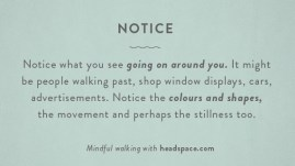 mindfulwalk2