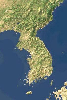 Přírodní rezervace na místě hranice? Severní a Jižní Koreu bude možná v budoucnu dělit přírodní rezervace. Oba korejské státy neprodyšně odděluje od roku 1953 hranice, která dosahuje čtyřkilometrové šířky.
