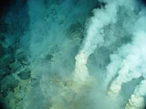 Laboratorní testy potvrdily, že experti z americké NOAA (National Oceanic and Atmospheric Administration) v průběhu expedice v dubnu 2004 na dně Tichého oceánu skutečně objevili zřídla, ze kterých unikal kysličník uhličitý.