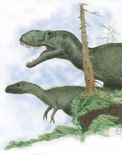 V poslední době došla většina paleontologů po analýze vývojového kladogramu (vývojového stromu) čeledi Tyrannosauridae k závěru, že tito populární draví obři Severní Ameriky a východní Asie byli pokryti primitivní formou drobného peří, které v jejich případě fungovalo jako srst (viz 21.</p><p> STOLETÍ, č. 9/2004).