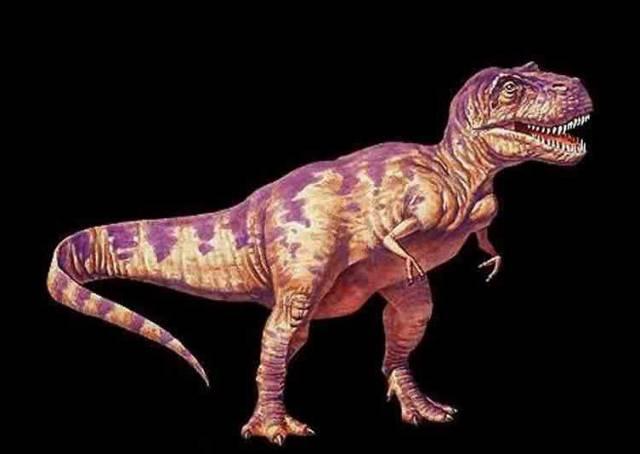Americkým vědcům se podařilo z kostí 68 milionů let starého Tyrannosaura rexe získat zbytky měkké tkáně! Jejich objev mění dosavadní teorie paleontologů.
