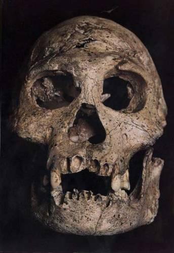 Objev zcela nečekaného lidského druhu Homo floresiensis, (21. STOLETÍ č. 2/05) žijícího prokazatelně ještě před 18 tisíci lety a pravděpodobně ještě mnohem později na indonéském ostrově Flores, rozvířil opět naplno spor zastánců dvou základních teorií o vývoji člověka.