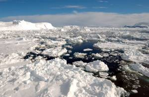 Letošní srpen byl pro led u severního pólu doslova zlomový.