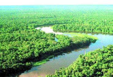 Ještě před 65 miliony let Amazonka vtékala údajně nikoliv do Atlantiku, nýbrž o Pacifiku.