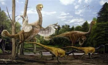 Číňané objevili nezvykle velký druh dinosaura s ptačími rysy.