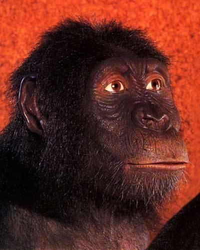 Některé vědecké spory jsou natolik vášnivé, že již dávno překročily hranice vědy samotné. Dodnes vzbuzuje tvrdé diskuse nejen mezi experty, ale i mezi širokou veřejností po celém světě například Darwinova teorie evoluce.