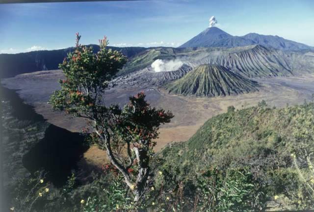 Asi nejnavštěvovanějším turistickým místem v provincii Východní Jáva na stejnojmenném indonézkém ostrově je národní park Bromo-Tengger-Semeru, vyhlášený chráněným územím v roce 1982.
