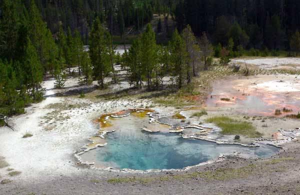 V horkých pramenech Yellowstonského národního parku v USA, objevili vědci letos v  létě dosud neznámý druh bakterie, která transformuje světlo na chemickou energii. Bakterie dostala název Candidatus chloracidobacterium thermophilum.