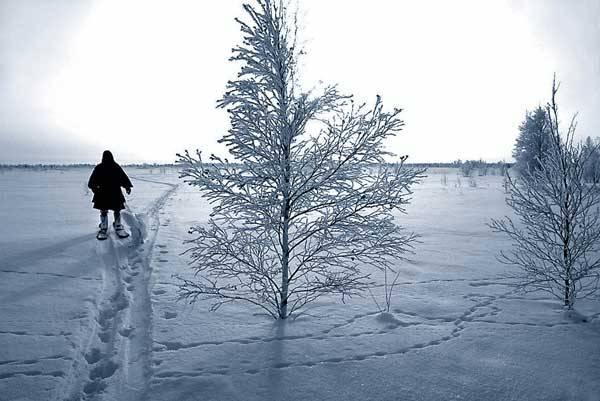 Obvykle při teplotě 0 °C (bod mrazu) se voda mění v led mnoha podob. Hned je veseleji příznivcům zimy, která na naší severní polokouli začíná 22. prosince. Zimní čas zase aktualizuje také následující pojmy.