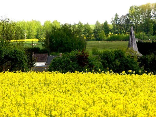 Interní komise EU přehodnocuje plány na podporu biopaliv.