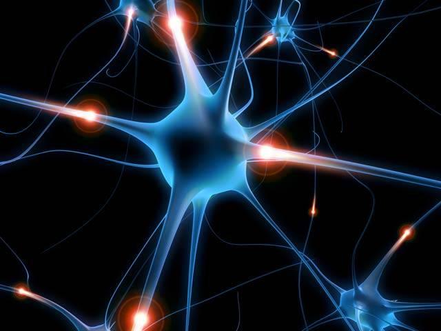Němečtí vědci si zahrávají s vůlí živých bytostí. Zatím dokáží stisknutím tlačítka na dálkovém ovladači jen nařizovat směr pohybu jednoduchým červům, ale jejich pravým cílem je i lidský mozek.