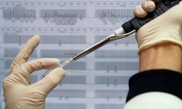 Další pokrok v luštění záhad života oznámili nizozemští vědci. Lékařské univerzitní středisko v Leidenu, které se nachází na západě země tulipánů, kompletně rozkrylo tajemství genomu ženy.