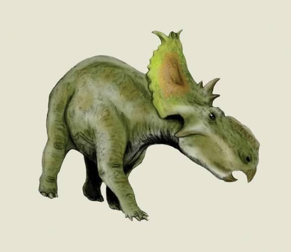 Pokud jde o dinosaury, podařily se již paleontologům takové objevy, o nichž jejich kolegové před půl stoletím neměli ani tušení. Ve světle nových nálezů se nyní zdá, že nejsme daleko od chvíle, kdy se podaří téměř zázrak. Díky molekulární dinosaurologii, jsou vědci na stopě zachovalé DNA tyranosaura.