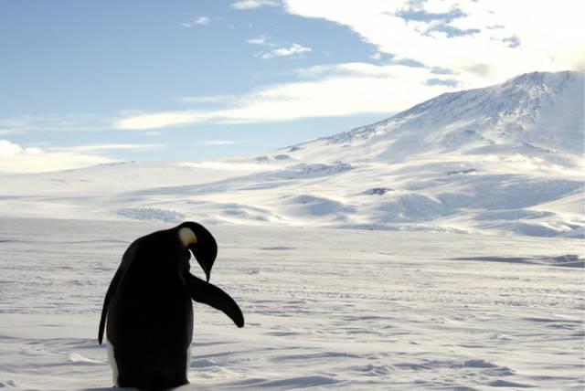 Ani sebelépe vybavená observatoř se  neobejde bez dobrých pozorovacích podmínek. Ideální místo pro hvězdárnu vědci nedávno objevili v Antarktidě.