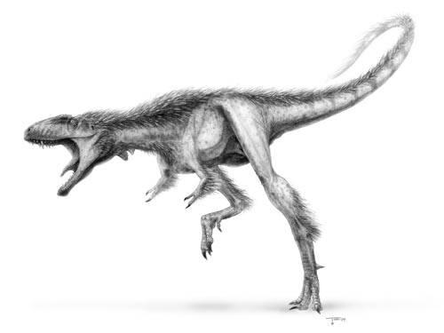Tyranosaurus rex, jehož fosílie nacházíme ve vrstvách svrchní křídy Severní Ameriky, patřil bezesporu mezi největší predátory, jaké kdy Země poznala. Nedávno byly v Číně nalezeny ostatky drobného ještěra, který nejspíše patřil mezi přímé předky tyranosaurů.