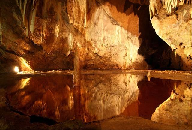 Tajemné hluboké jeskyně leckomu nahánějí hrůzu. Přitom právě tyto prostory ve skalách byly prvními obydlími našich předků. I dnes jsou plné života, přebývají zde nejroztodivnější tvorové.