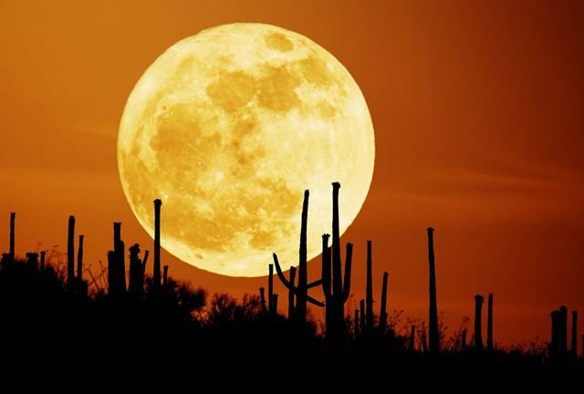 Měsíc je pro naši Zemi nejbližším vesmírným tělesem a zároveň věrným souputníkem. Vědci se dnes mohou také pyšnit tím, že je ze všech těles také tím nejprozkoumanějším. Jak jste na tom se znalostmi o Měsíci vy, si můžete ověřit v kvízu 21. STOLETÍ.
