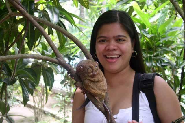 Malý bizarní primát s obrovskýma očima, připomínající postavičky z filmů žánru fantasy, se stal hlavním hrdinou výzkumu českých vědců. Nártoun filipínský (Tarsius syrichta), který žije jen na několika ostrovech Filipín, je právě nyní sledován v rámci unikátního tuzemského projektu. Přímo za vědci se vypravil reportér 21. STOLETÍ.