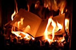 Tam, kde se pálí knihy, dojde také na pálení lidí aneb kultura v nacistickém Německu
