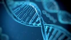 Genetika: Kdysi buržoazní pavěda, dnes zásadní pomocník medicíny