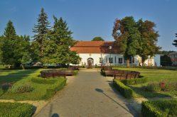 Ve Slatinicích byly nalezeny pozůstatky germánského sídliště
