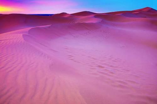Růžová barva je tou nejstarší na Zemi