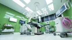 Pacientům po transplantaci pomůže mikroflóra