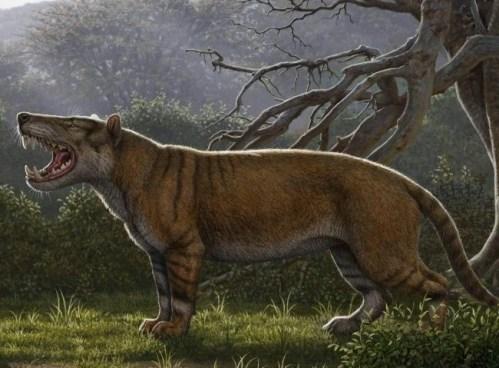 Objeven pravěký lev