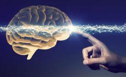 Kdo porazí Parkinsonovu chorobu?