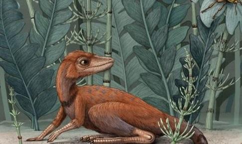 Dinosaurus do kapsy
