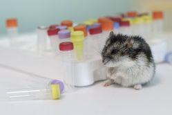 Dostupné PCR testování se samoodběrem ze slin