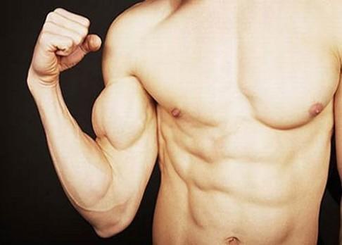 Odhalen protein, po kterém rostou svaly