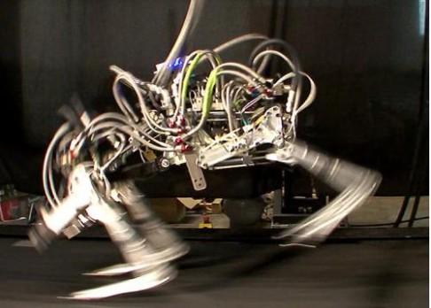 Čtyřnohý robot pokořil Usaina Bolta
