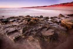 Tisíce dinosauřích stop nalezeny v Austrálii