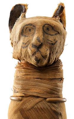 Drsný život egyptských mazlíčků