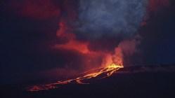 Vzácní leguáni vohrožení: Galapážská sopka se probudila
