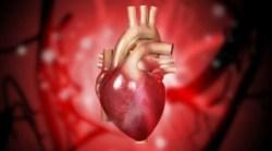 Kardiologové Na Homolce operovali srdce pomocí nové metody