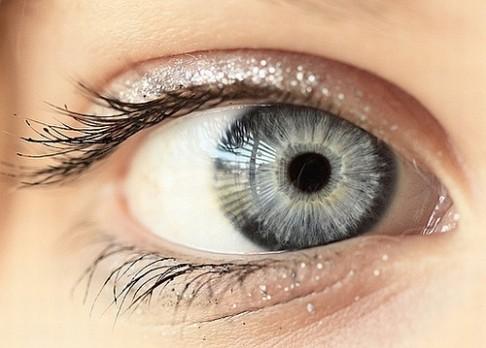 Jak se vyvíjel zrak?