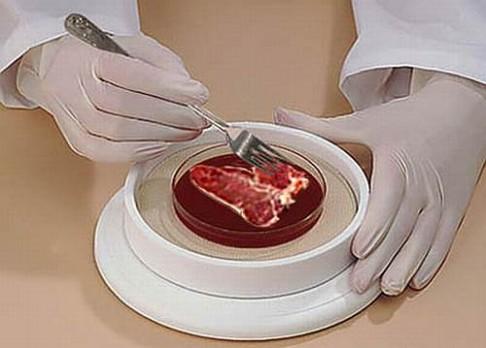 Vědci stvořili umělé maso