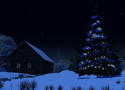 Vánoční stromky zpomalují skleníkový efekt