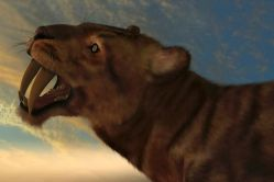 Vymřeli velcí savci kvůli změně klimatu?
